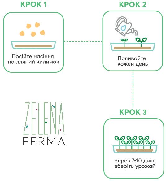 Процес вирощування мікрозелені